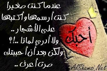 ma3ani alhob